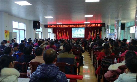 广西小灵象承办灵山县电子商务进农村示范培训班在旧州镇免费开讲