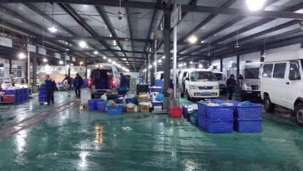 田野配送:应对低温寒潮,保障菜篮子供应充足-焦点中国网