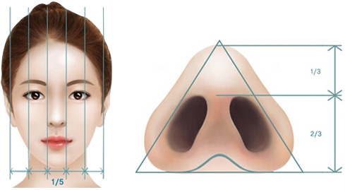 那你可以选择进行这项手术,让你的鼻孔形状更加的符合你喜欢的形状.